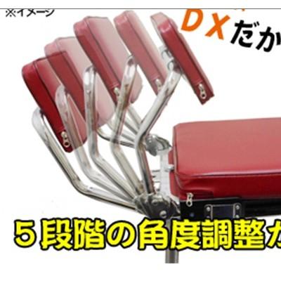 신상품/dx-중형 소좌대(등받이 5단 각도조절)*가방포함